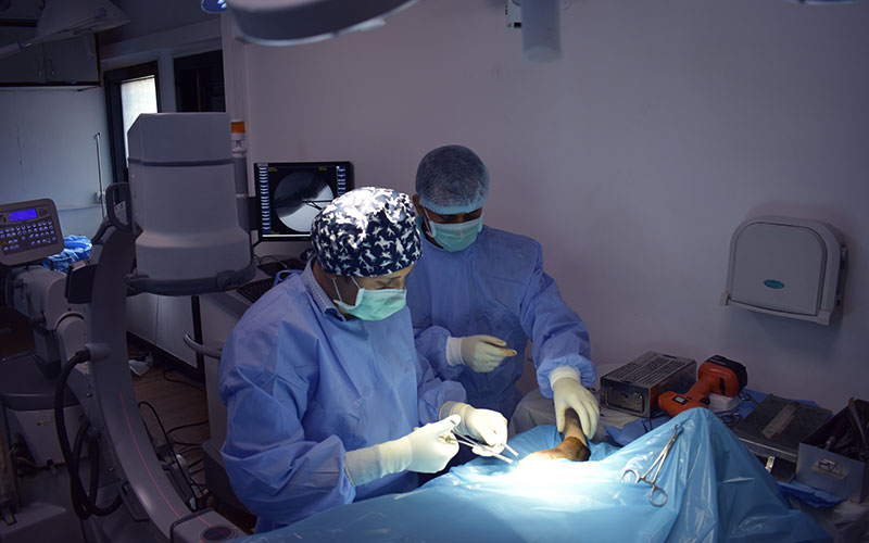 service-page-images-specialized-surgical-team